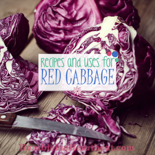 Leftover Ingredients: Red Cabbage