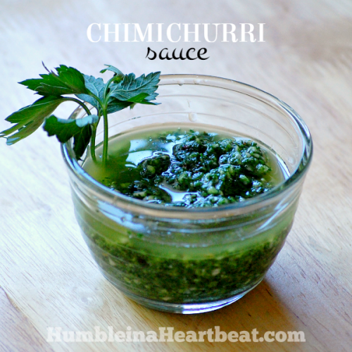 Argentinian Chimichurri Sauce