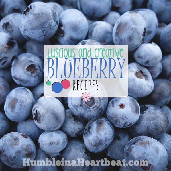 This is an awesome list of 20 recipes containing blueberries! Pin for when you need ideas to use up blueberries!