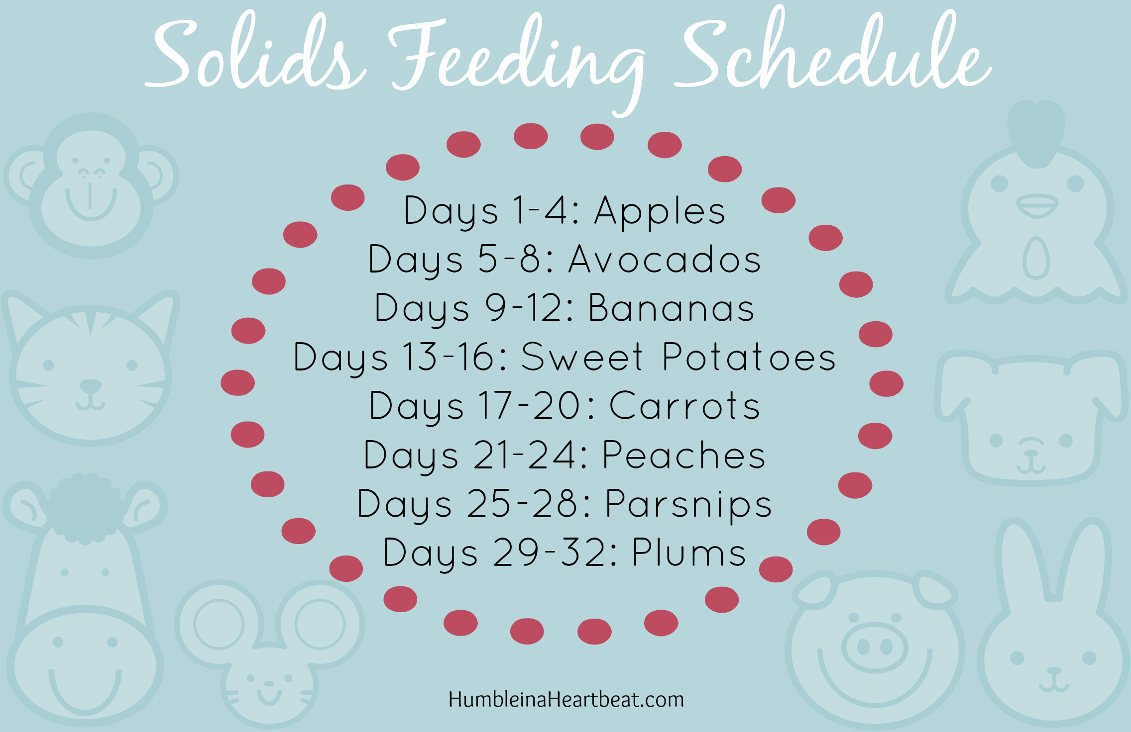 Solids Feeding Schedule