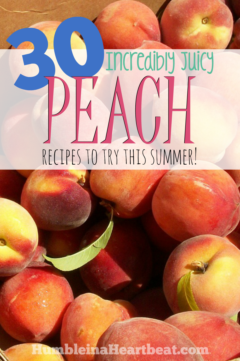 There's something for everyone in this collection of peach recipes! If you find yourself with too many peaches, these ideas will be helpful and delicious!