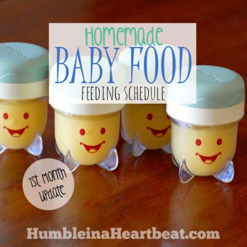 Solids Feeding Schedule: Month 1 Update
