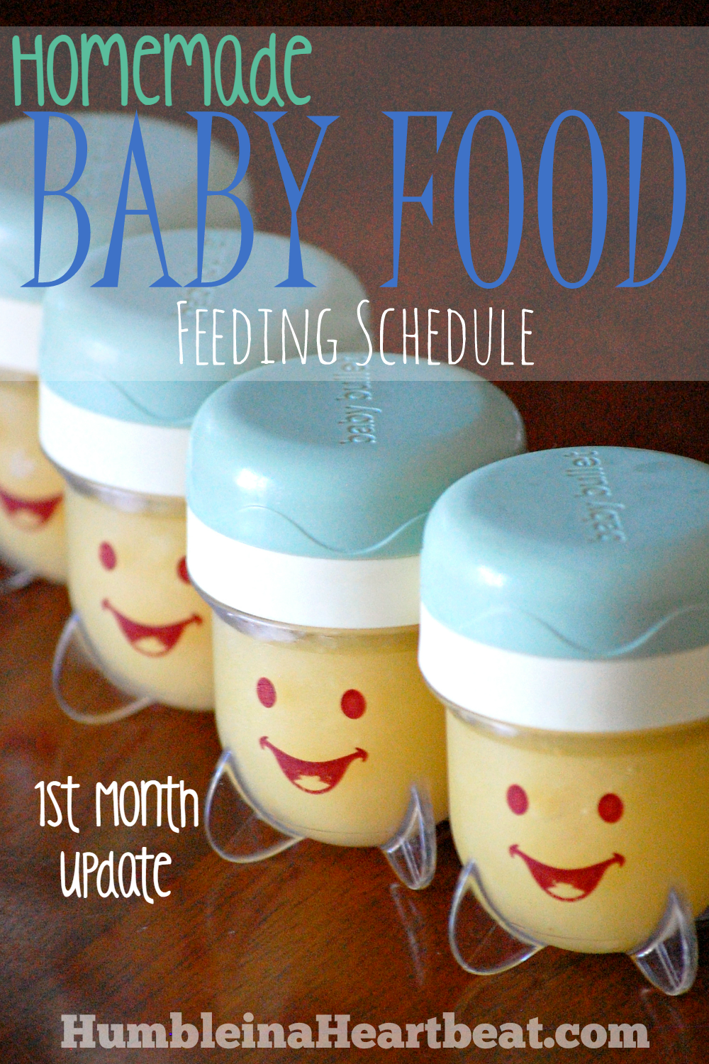 This is a very detailed list of all the foods one mama introduced to her baby. She even gives the total cost of feeding her baby!