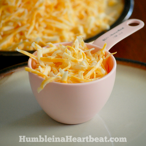 Ever wondered how much you are spending on cheese, whether you buy the blocks or buy it pre-shredded? Find out the cost savings over a year of the type that is cheaper and you might just change your buying habits!