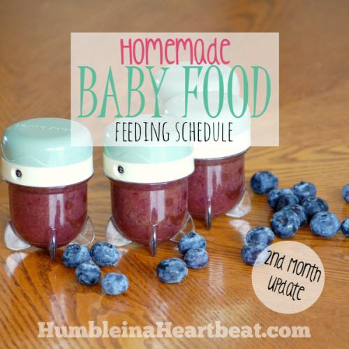Solids Feeding Schedule: Month 2 Update