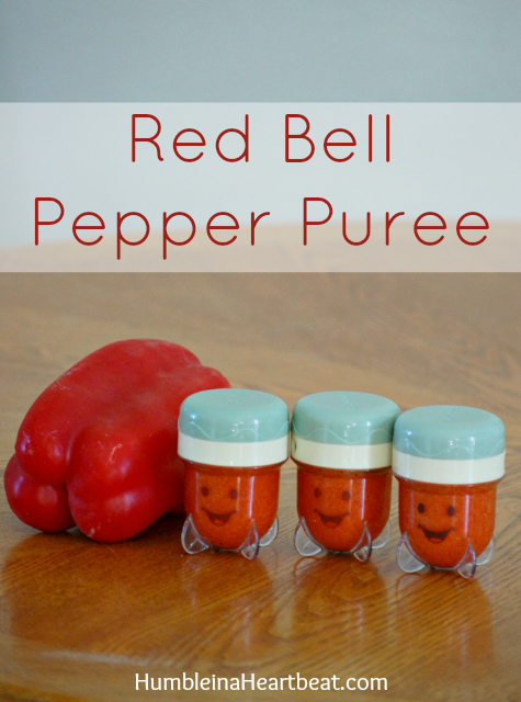 For the third month of homemade baby food, baby ate red bell pepper, grapes, apricots, and many more! Find out the cost and time it took to make each one. Very thorough!