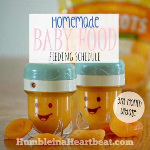 Solids Feeding Schedule: Month 3 Update