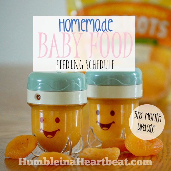 Solids Feeding Schedule: Month 3 Update