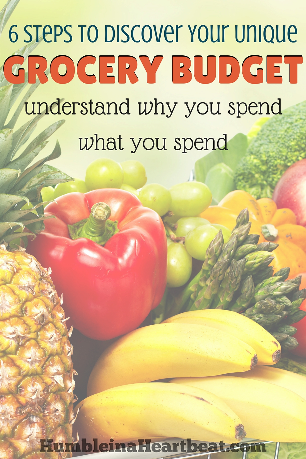 Why is it that you spend $700 a month on groceries? Take into account the factors that make up your family's unique grocery budget. Go through these 6 steps to figure out whether you can reduce it if you need to or increase it if that's necessary.
