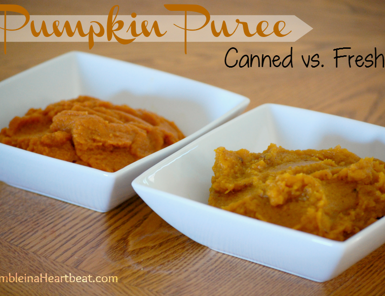 Is it really worth it to make your own pumpkin puree? I set out to find out, and the results were shocking!