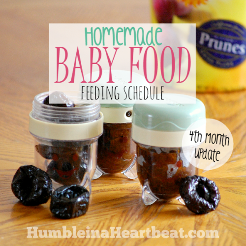 Solids Feeding Schedule: Month 4 Update