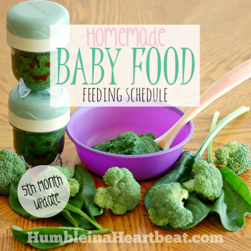Solids Feeding Schedule: Month 5 Update