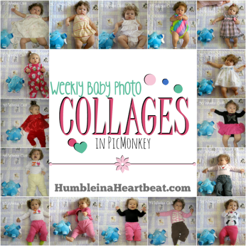 Weekly Baby Photo Collages in PicMonkey