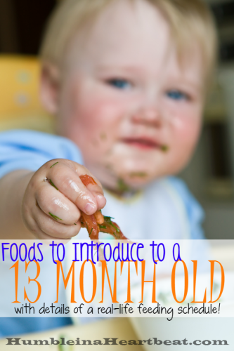 Think only 6 month olds need to be introduced to foods? Think again! One year olds need to be introduced to new foods, too! This month my 13 month old tried mushrooms, eggplant, and turnips. Find out details of these foods in this post, as well as what she's been eating the rest of the months.