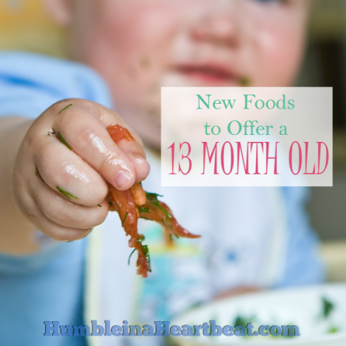 Foods to Introduce at 13 Months