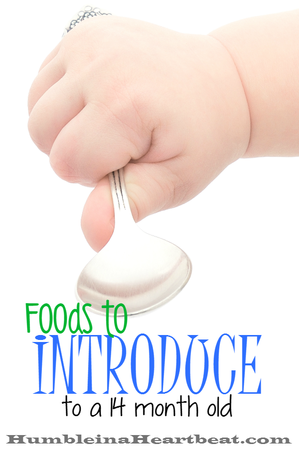 Here are the details of 9 great foods you can introduce or reintroduce to your 14 month old. Never give up on any food! Just keep offering!!