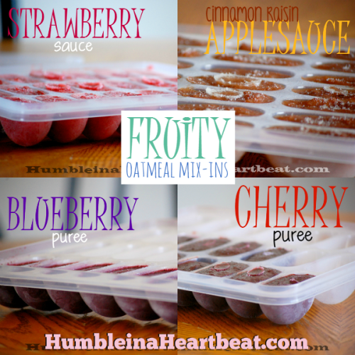 Fruity Oatmeal Mix-Ins