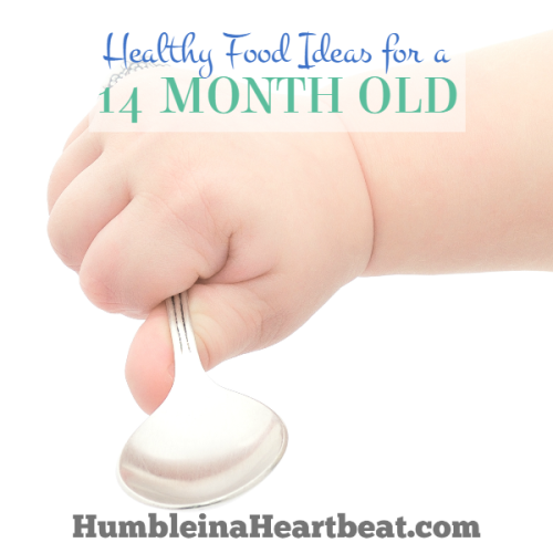 Foods to Introduce at 14 Months