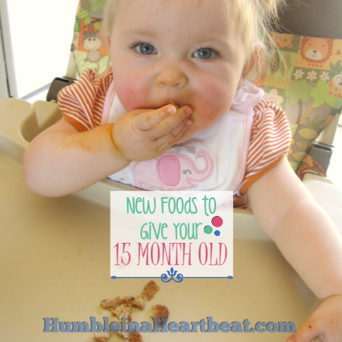 Foods to Introduce at 15 Months