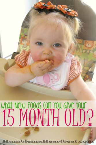 Rotating new foods for your growing toddler is essential for optimal nutrition. Here are the 4 foods I introduced to my 15 month old this month with details about each one.