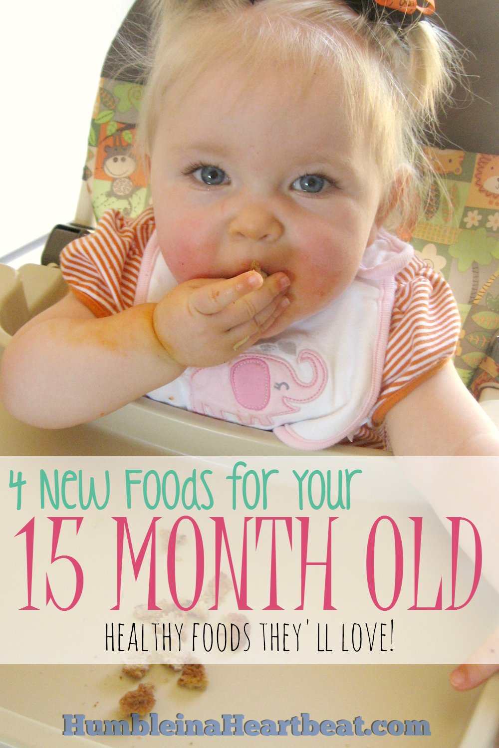 Rotating new and familiar foods for your growing toddler is essential for optimal nutrition. Here are the 4 foods I introduced to my 15 month old this month with details about each one.