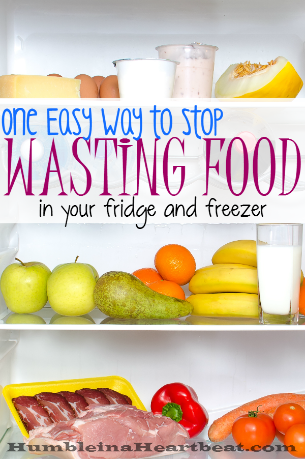 Save yourself some cash each month by doing a fridge and freezer inventory. You'd be surprised how much food you waste just because you forget it's there.