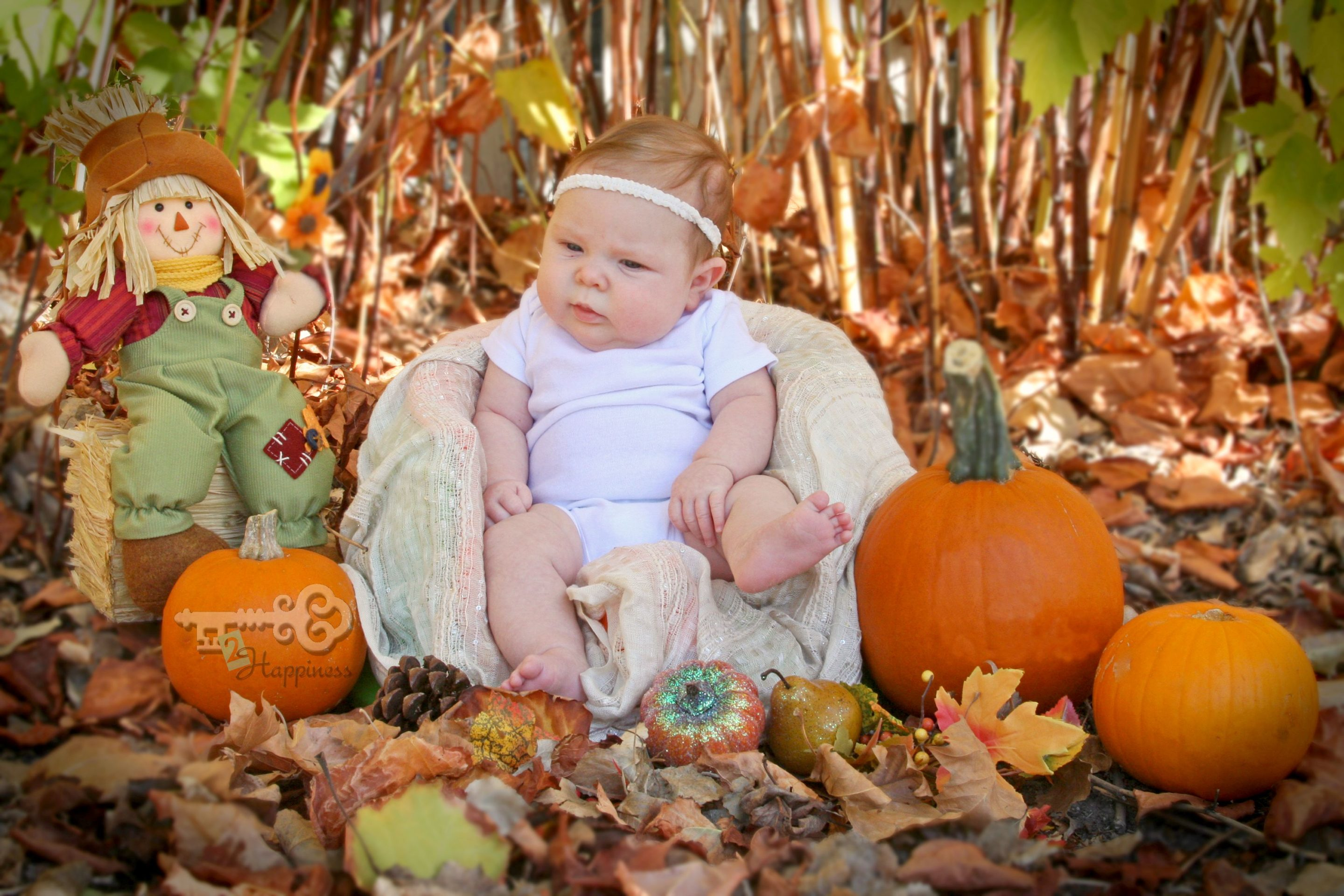 Fall is such a perfect time to take tons of pictures. Here is a list of all the activities your kids might do this fall that you should be ready to capture through your lens.