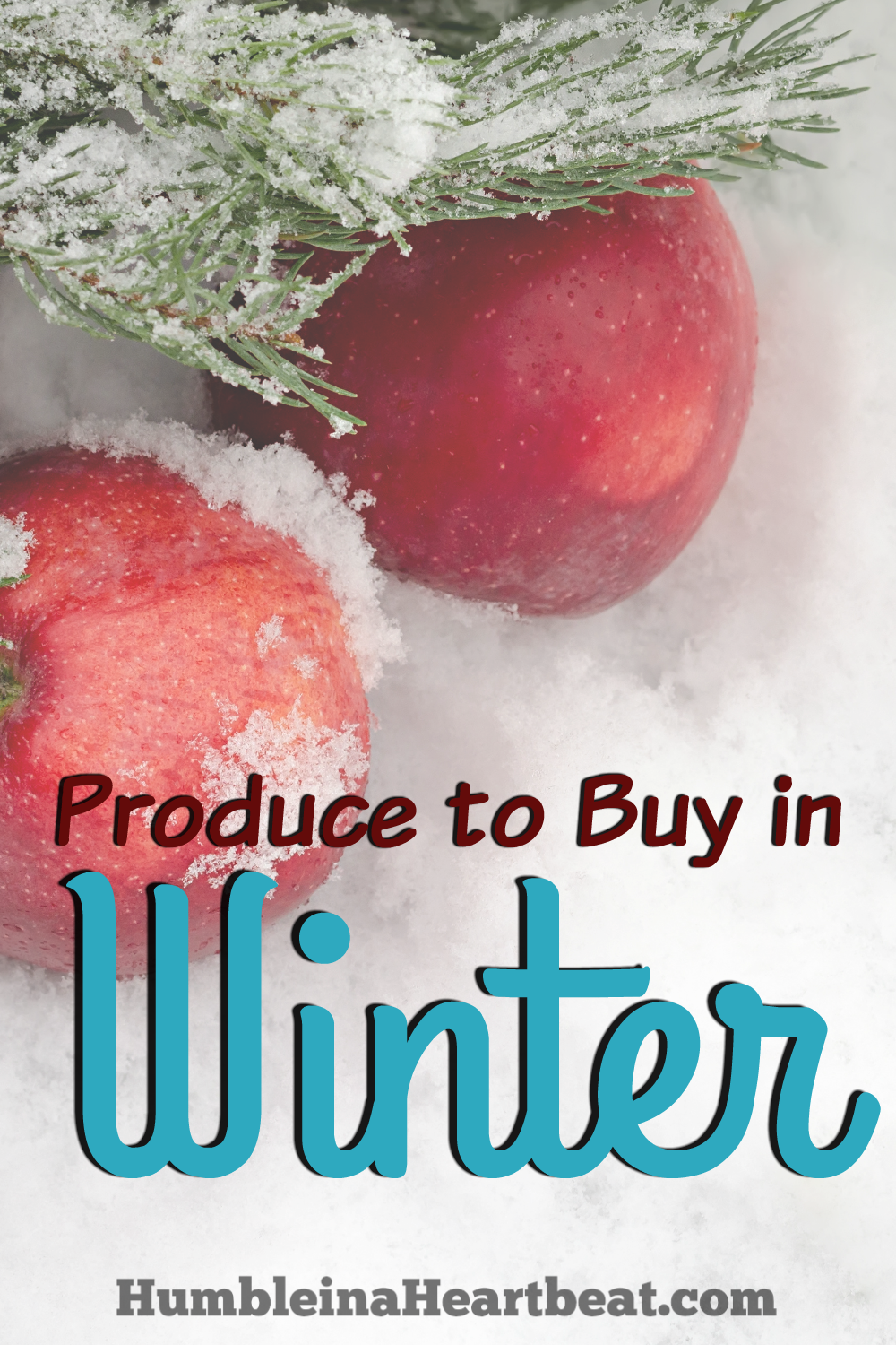 Buying in season not only saves money, but it tastes better, too! If you'd like to add more variety to your family's meals, be sure to reference this list of produce that is in season in winter.