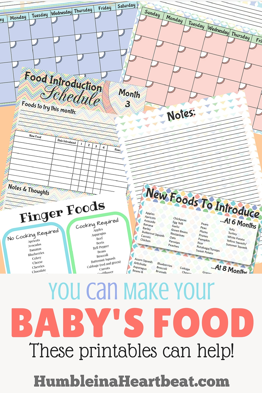 Too busy to make your baby's food at home? These printables can help! It's really not rocket science to feed your baby!