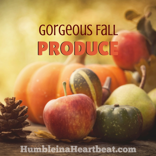 Fall produce is amazing! Here is a list of all the fruits and vegetables available in the fall that you shouldn't miss.