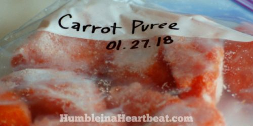 I love this idea! My family could use the extra nutrition boost from these frozen veggie purees. I'm going to start with carrots, pumpkin, broccoli, and kale.