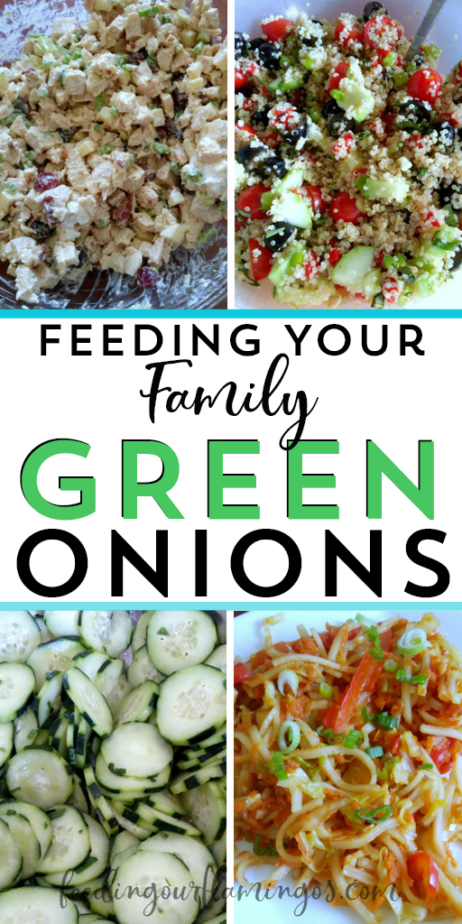 Tired of eating the same old vegetables every single week? Switch it up with this monthly produce challenge and try one new veggie each month. This month we tried green onions 8 different ways! #healthydinnerideas #greenonions #monthlyproducechallenge