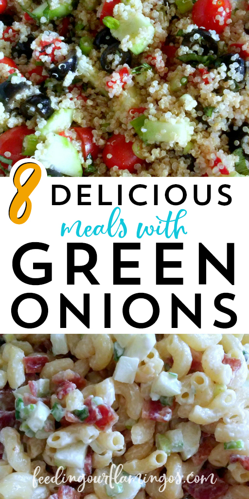 Tired of eating the same old vegetables every single week? Switch it up with this monthly produce challenge and try one new veggie each month. This month we tried green onions 8 different ways!