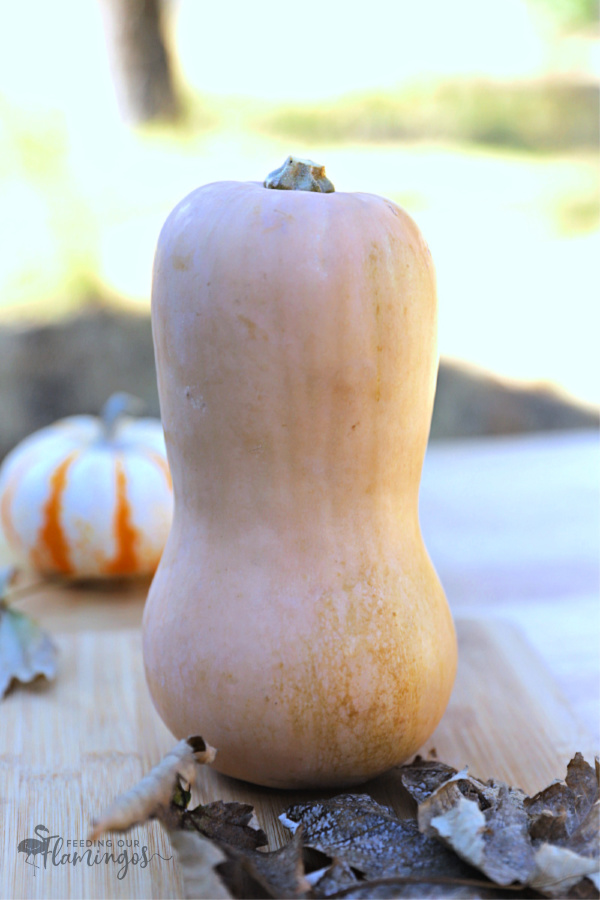 Tired of eating the same old vegetables every single week? Switch it up with this monthly produce challenge and try one new veggie each month. This month we tried butternut squash 12 different ways!