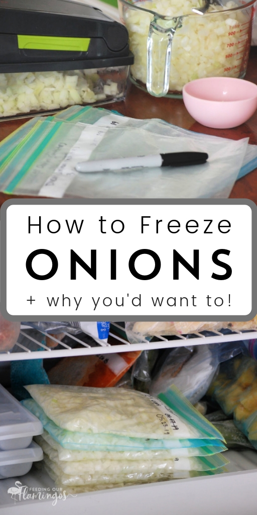 The single best thing you can do to speed up your cooking process is keeping onions in the freezer. I'm not even kidding! Learn all about how to freeze onions now so you can get dinner on the table faster!